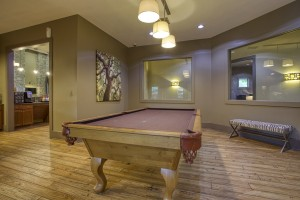 1 Bedroom Apartments in San Antonio, TX - Pool Table