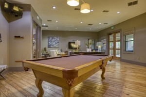 1 Bedroom Apartments in San Antonio, TX - Pool Table (2)