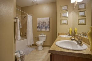 1 Bedroom Apartments For Rent in San Antonio, TX - Model Bathroom (2)