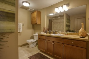 2 Bedroom Apartments For Rent in San Antonio, TX - Model Bathroom (2)