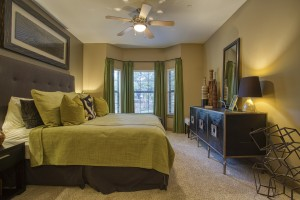 2 Bedroom Apartments For Rent in San Antonio, TX - Model Bedroom (2)