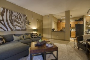 2 Bedroom Apartments For Rent in San Antonio, TX - Model Living Room & Kitchen
