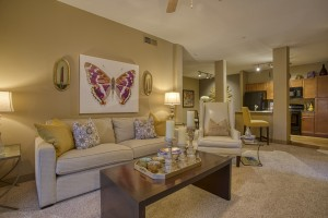2 Bedroom Apartments For Rent in San Antonio, TX - Model Living Room (2)