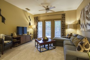2 Bedroom Apartments For Rent in San Antonio, TX - Model Living Room (3)
