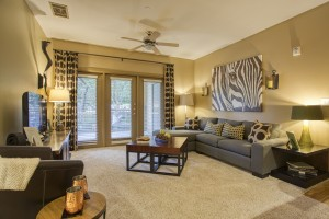 2 Bedroom Apartments For Rent in San Antonio, TX - Model Living Room (4)